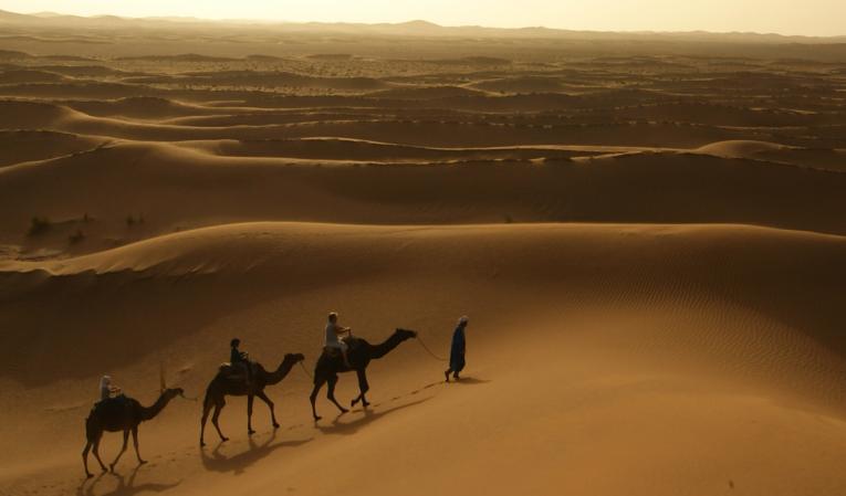 Balade à dromadaire sur les dunes au coucher de soleil...